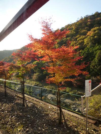 紅葉狩り・嵐山29