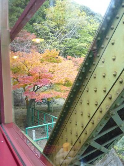 紅葉狩り・嵐山24