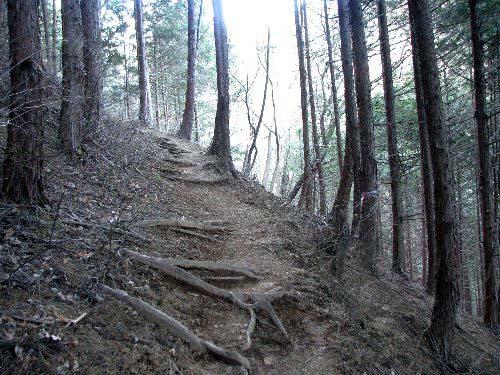 2 登り道1