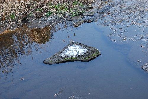川の岩の氷