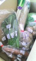有機野菜つめあわせ(;´Д`)