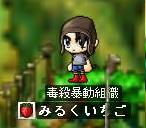 Maple091230_214041.jpg