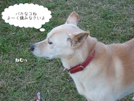 hozumi-1.jpg