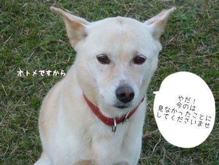 hozumi-3.jpg