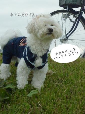 hozumi-4.jpg