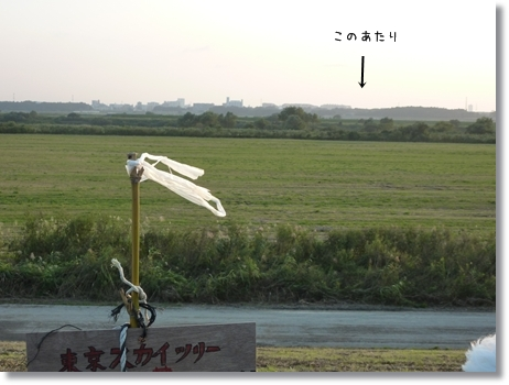kariko-5.jpg