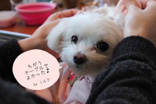 kukuofu-5.jpg