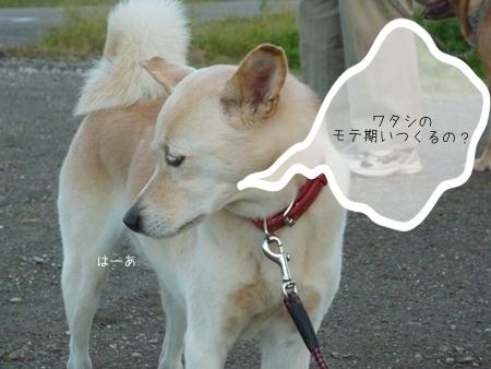 momoka-3.jpg