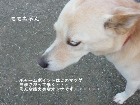 momoka-9.jpg