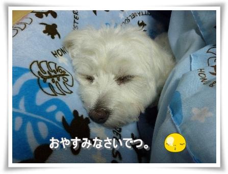 nagicoco-7.jpg