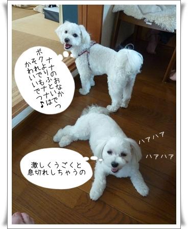 nanagiwa-17.jpg