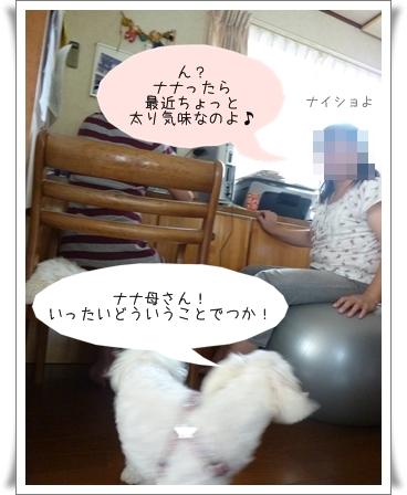 nanagiwa-9.jpg