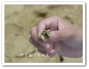 okinawa-6.jpg
