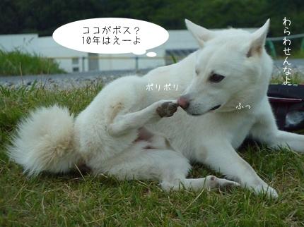 rakuraku-11.jpg