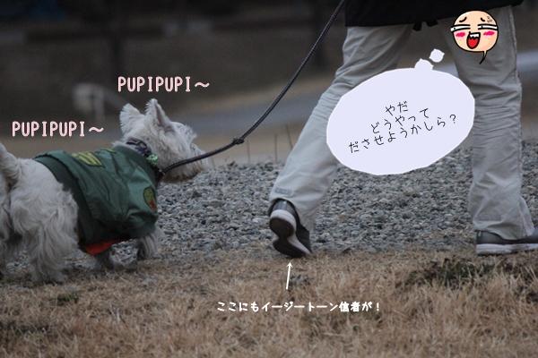 ronpupi-4.jpg