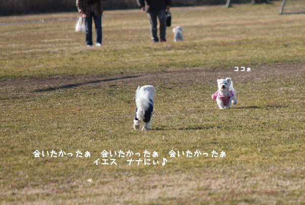 ryoku11-9.jpg