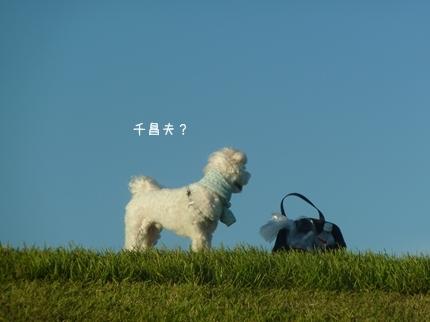 tenu-3.jpg