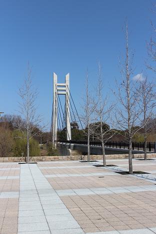 山田池公園 064