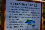 041_20111020084840.jpg