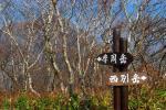053_20111031081648.jpg