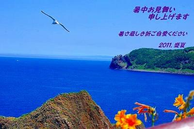 DSC_0339_20110711095209.jpg