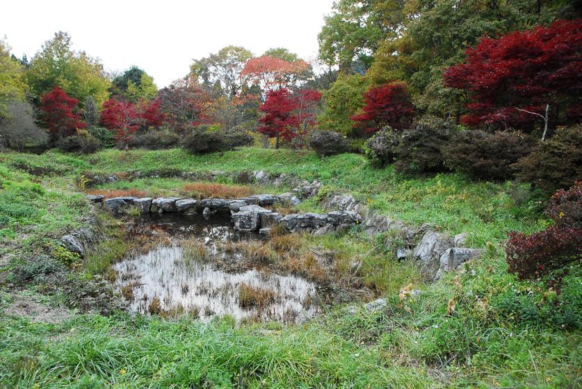 花園花貫自然公園1