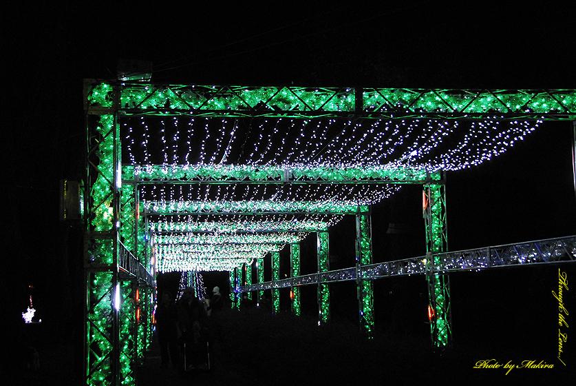 光の祭典会場へのゲート