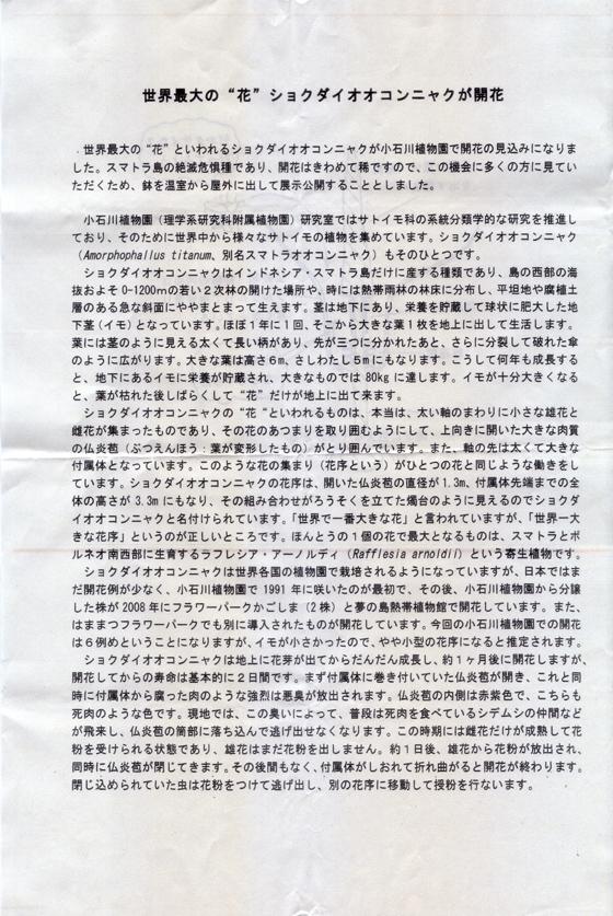 ショクダイオオコンニャクの花0007-1