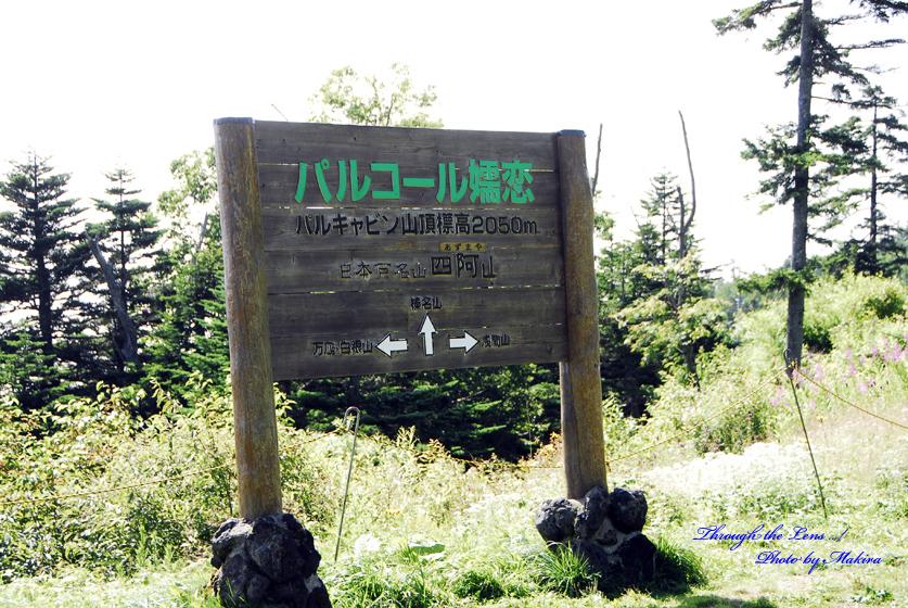 パルキャビン山頂
