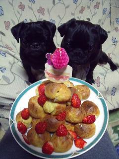 ぺちゃ&のん&ケーキ