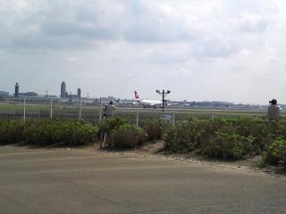成田さくらの山