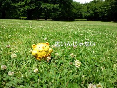 PAP_0037_20100612172555.jpg