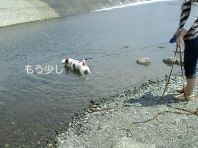 PAP_0171_20100727203116.jpg