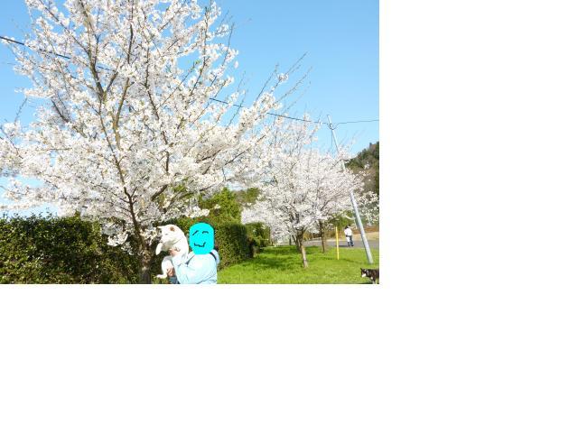 snap_a2z14u_201044111714.jpg