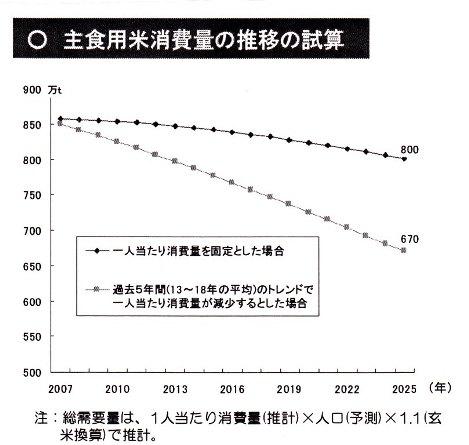 米 消費量 予測.jpg