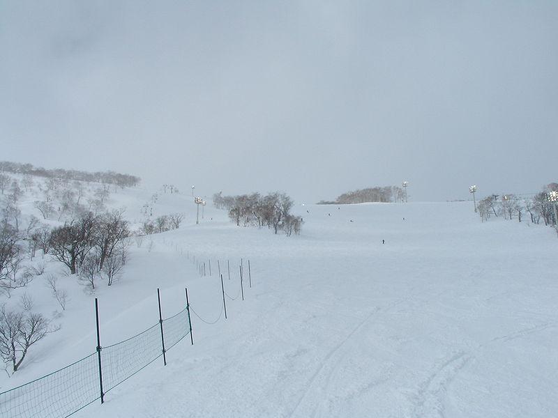 北海道雪原
