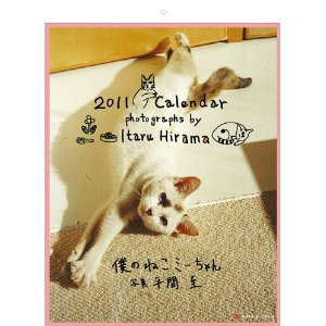 平間至2011年カレンダー画像1