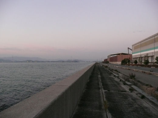 倉敷市・玉島ハーバーアイランド西岸(その1、10.12上旬)