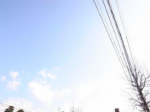 RIMG00111.jpg