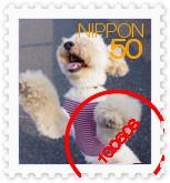 [stamp08092537]IMGP2440