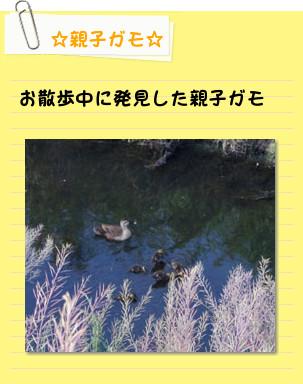 [postit08092112]image