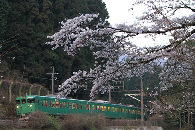 20110413.jpg