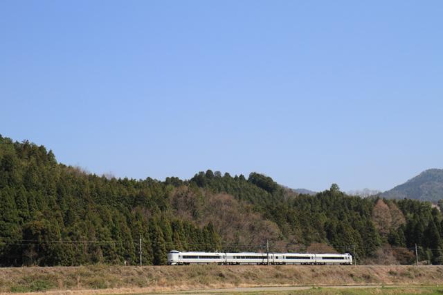 20110420.jpg