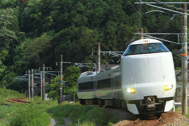 20110604.jpg
