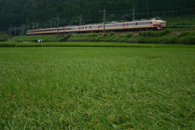 20110713.jpg