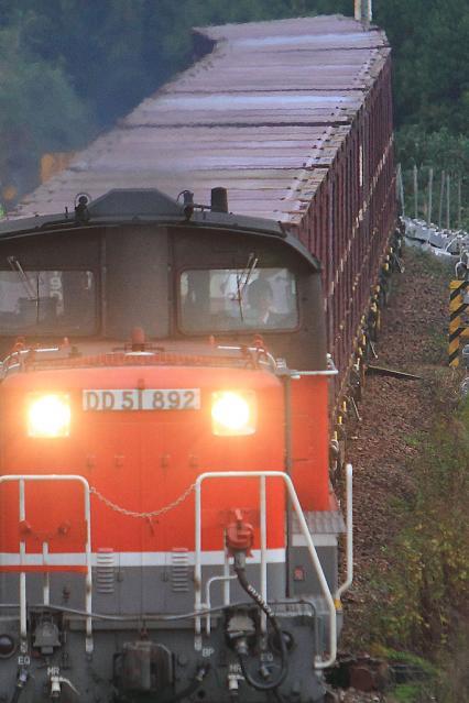 20111118.jpg