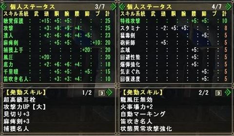 麻痺剣捕獲名人笛構成_2_r
