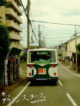 hiyodori24.jpg