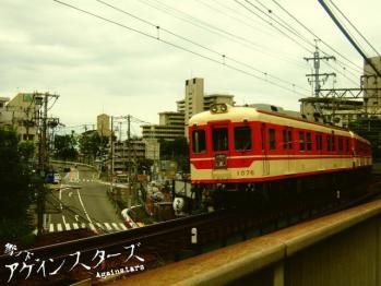 hiyodori28.jpg