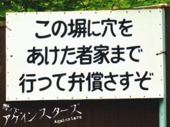 hiyodori34.jpg